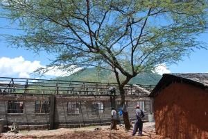 Primary School Dorm/Rescue Center